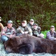 Steve's Brown Bear Hunt